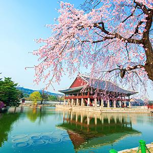040517-Enjoy ISA in Korea.png