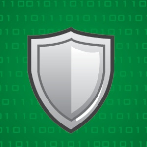 The ACVA Shield2.jpg